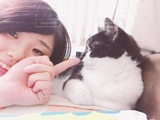 猫が好きの写真・画像素材[116947]