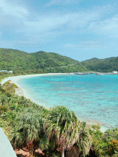 渡嘉敷島の海の写真・画像素材[1088584]