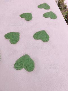 ハートの芝生の写真・画像素材[1088592]