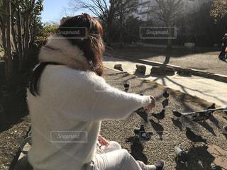 鳩に餌をあげる女性の写真・画像素材[959574]