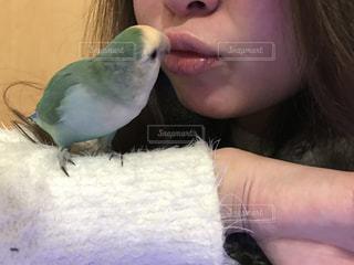 小鳥と女性の写真・画像素材[974578]