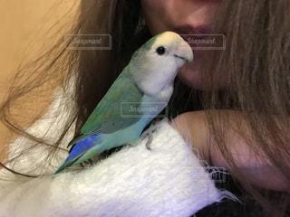 小鳥と女性 - No.974580