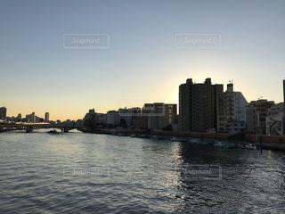 夕方の隅田川の写真・画像素材[984790]