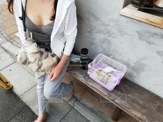 インコと一緒に散歩の写真・画像素材[2704263]
