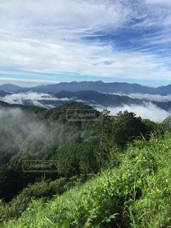 陣馬山への道のりの写真・画像素材[919399]