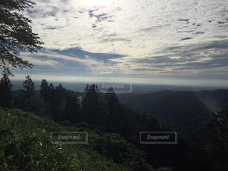 陣馬山頂上までの道のりの写真・画像素材[919400]