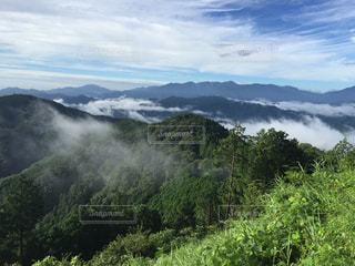 陣馬山までの道の写真・画像素材[919401]