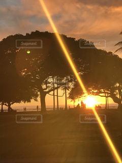 Waikiki - No.919097