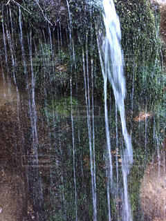 苔と滝の写真・画像素材[917892]