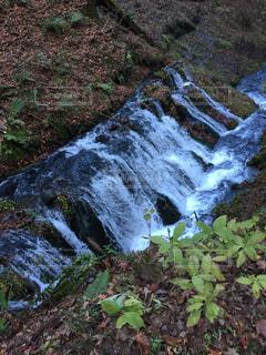 流れる水の写真・画像素材[917895]