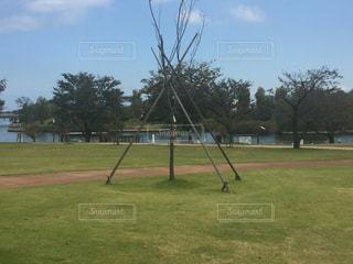 フィールドで野球のバットを振る男の写真・画像素材[919349]