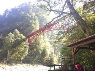 山の中の赤い鉄橋の写真・画像素材[919413]