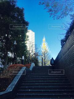 階段の先にの写真・画像素材[1688961]