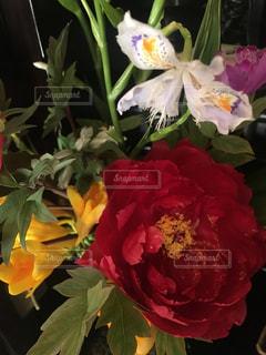 花の写真・画像素材[2047869]
