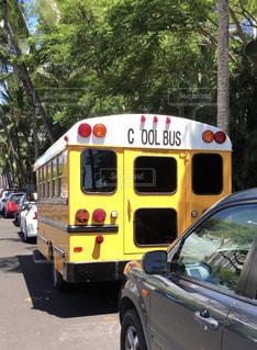 クールなバスの写真・画像素材[1455134]