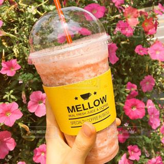 ピンクの花とフルーツドリンクの写真・画像素材[921328]