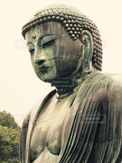 鎌倉大仏の写真・画像素材[921619]