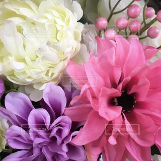 近くの花のアップの写真・画像素材[922276]