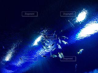 暗い部屋の中の光の写真・画像素材[1111814]