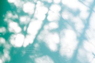 木漏れ日を映し出す壁の写真・画像素材[1805327]