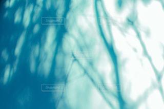 木漏れ日を映し出す壁の写真・画像素材[1805330]