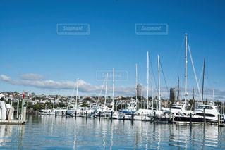 ニュージーランド オークランドシティの写真・画像素材[931797]