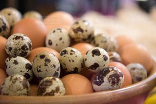 うずらの卵の写真・画像素材[935520]