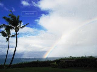 ハワイの写真・画像素材[1278842]