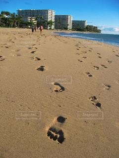 ハワイの写真・画像素材[1278843]