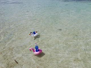 ビーチに浮かぶ浮き輪の写真・画像素材[1649874]
