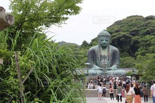鎌倉の大仏 - No.923455