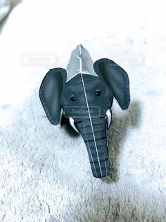 象の写真・画像素材[938637]