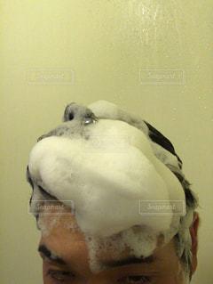泡の写真・画像素材[2145276]