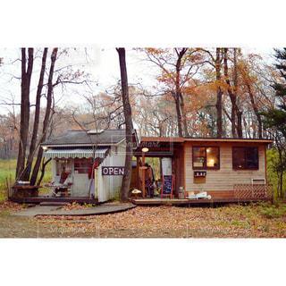 森の中の小さなお店の写真・画像素材[968931]