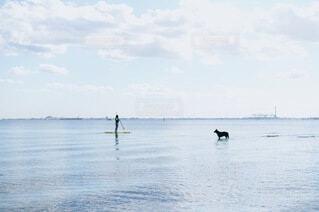 海上での対面の写真・画像素材[3834001]