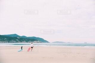海の親子の写真・画像素材[3860147]