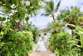 ハワイ挙式でのウエディングフォトの写真・画像素材[1078320]