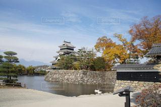 松本城の写真・画像素材[1006739]