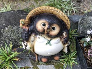 狸の置物の写真・画像素材[936209]