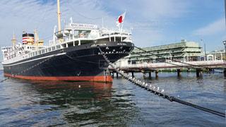 船の鎖に並ぶカモメ達の写真・画像素材[925342]