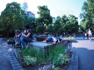 公園の写真・画像素材[592202]