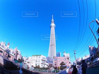 東京スカイツリーの写真・画像素材[1190284]