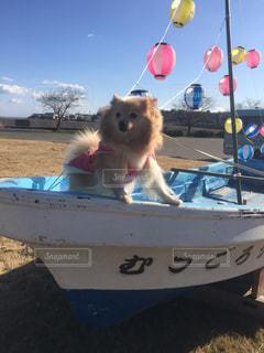 漁師犬 - No.927764