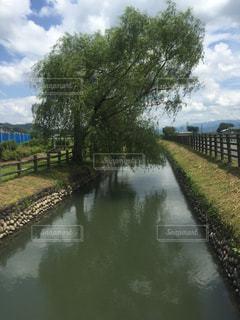 水の体の上を橋を渡る列車 - No.931142