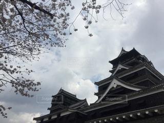 熊本城と桜 - No.959577