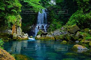 森の中の滝の写真・画像素材[933658]