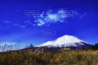 晴天の富士山の写真・画像素材[949154]