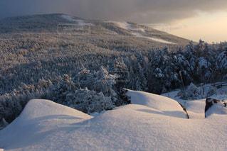 粉雪の世界の写真・画像素材[942187]