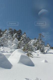 すべてを包み込む冬の写真・画像素材[942198]