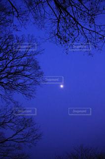 見上げた空の写真・画像素材[944032]